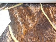 Stitching horse 2