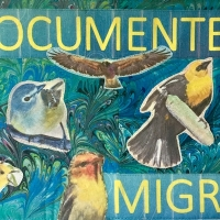 NO WALL HIGH ENOUGH to stop the millions of birds who use the flyways across the border, but many non-avian species are impeded and endangered by border walls. Fabric collage.