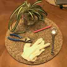 Round place mat with various items including a plant, fork, pen, latex glove, and pliers.